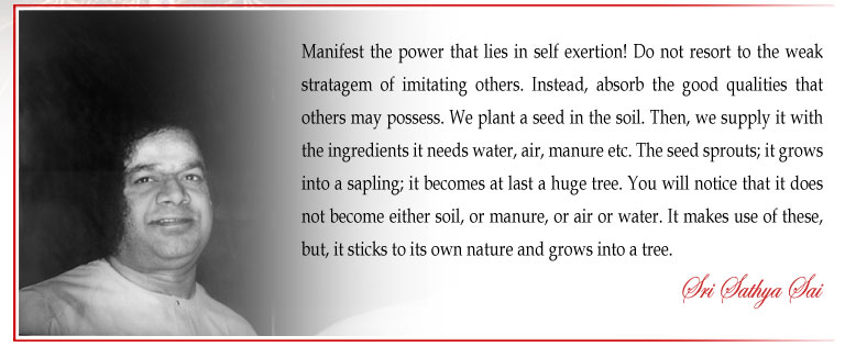 Manifest the power that lies in self exertion! Do not resort to the weak stratagem of imitating others. Instead, absorb the good qualities that others may possess. We plant a seed in the soil. Then, we supply it with the ingredients it needs water, air, manure etc. The seed sprouts; it grows into a sapling; it becomes at last a huge tree. You will notice that it does not become either soil, or manure, or air or water. It makes use of these, but, it sticks to its own nature and grows into a tree. - Sri Sathya Sai